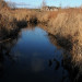 Barclay-8-Fieldstone-Estates-Coldwater-Stream thumbnail