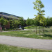 Cookstown-6-Community-Park-Sustainable thumbnail