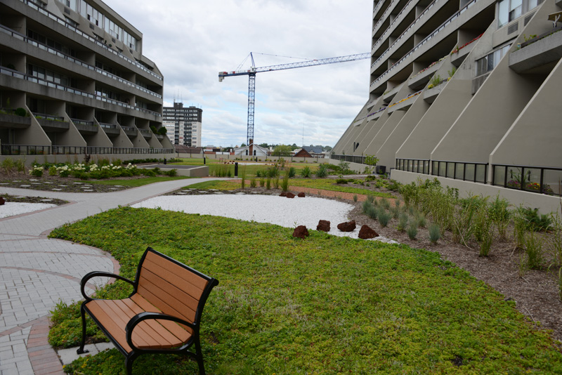 McLaughlin-Square-3-Greenroof-Residential