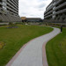 McLaughlin-Square-4-Greenroof-Residential thumbnail