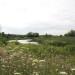 Nichol-Ave-1-Storm-Pond-Wetland-Livestakes thumbnail