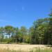River-Road-2-Tree-Preservation-Arborist-Inventory thumbnail