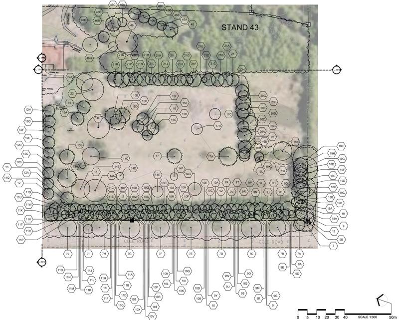 Vasvik-1-Expropriation-Tree-Inventory-Valuation
