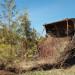 Villas-Of-Upper-Wasaga-1-Transplating-Native-Plants thumbnail