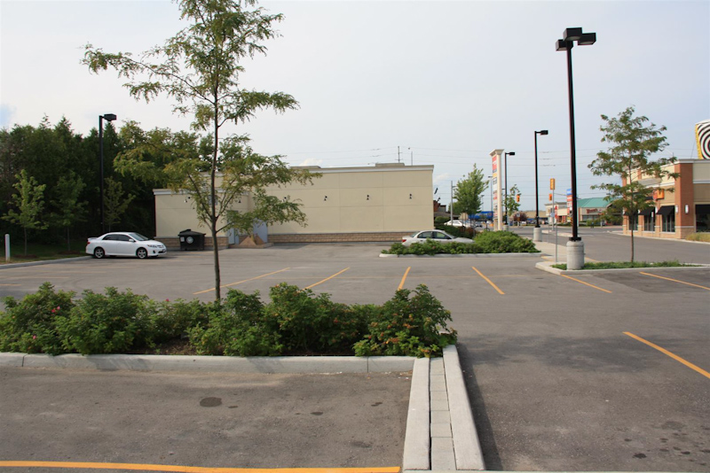 Whitetail3-Plaza-Commercial-LowMaintenance-Impact